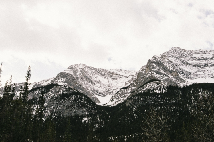 Canmore Photographer